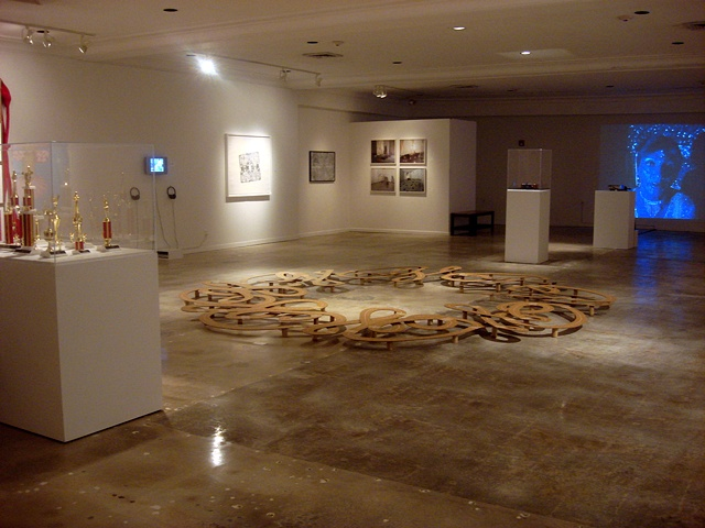 Installation view of Exploding the Lotus