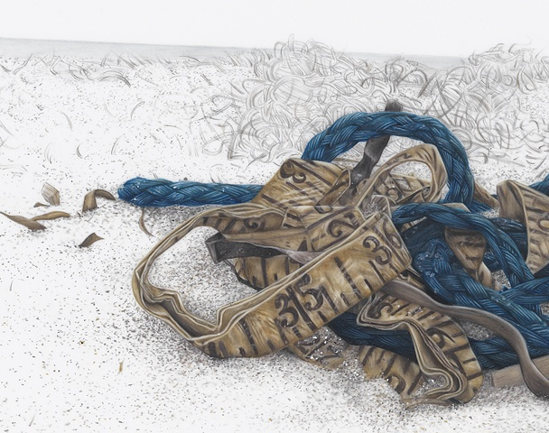 Detail from:  Blue Rope with Measuring Tape and Seaweed