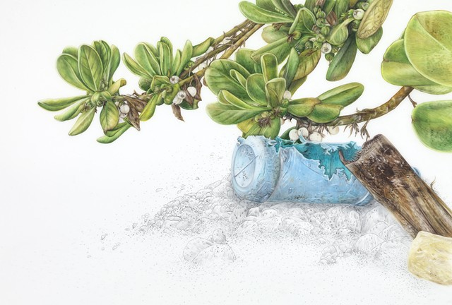 Tropical Almond Tree with Bottle