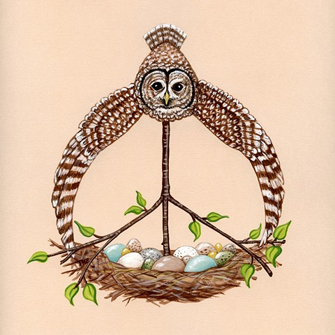 peace wise owl