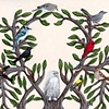 The Tree of Bird Life