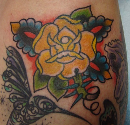 Yellow Rose on Kitty