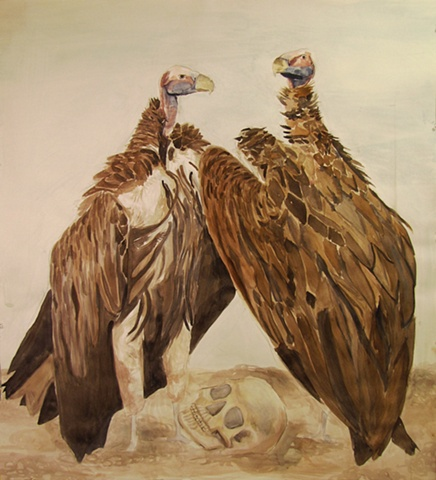 lappetfaced vultures and human skull