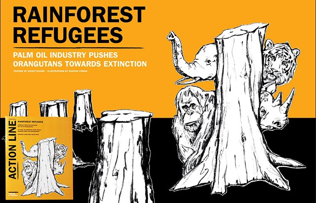 Rainforest Refugees