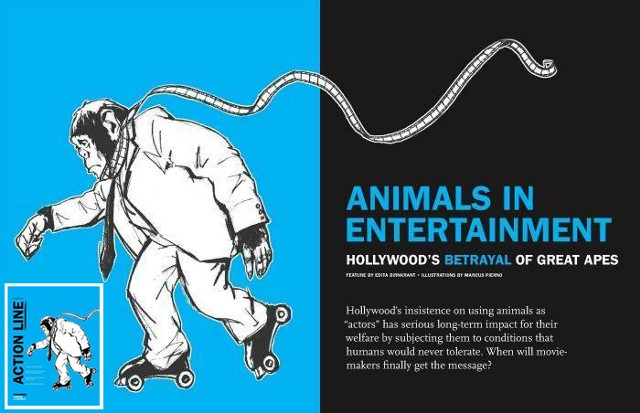 Animals In Entertainment: Hollywood's Betrayal of Great Apes