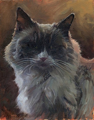 Matilda The Algonquin Cat Official Portrait