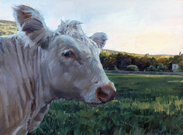 Marcus Pierno Sanctuary Animals Series Kayli the Cow