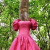 The Botany of Dresses