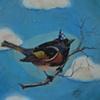 bittersweet bird: one