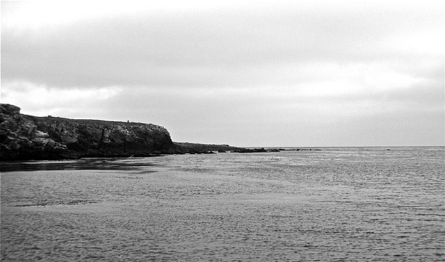 Wilson Cove