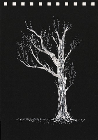 pen, ink, white pen, black paper, drawing, contemporary drawing, modern drawing, representational drawing, realism