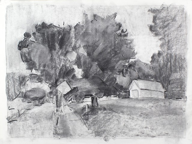 Fredericksburg Willis St. Charcoal on Paper 18 x 24 2016