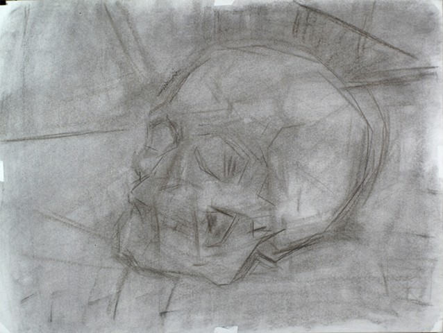 Demonstration Skull Charcoal on Paper 18 x 24 2016