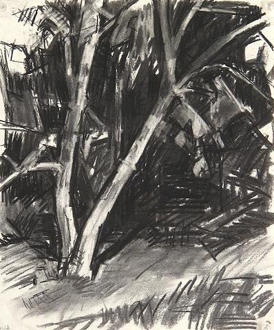 UNH trees