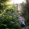 Lakehouse July 2008