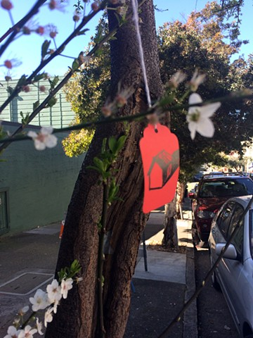Plum Tree in Spring, San Francisco