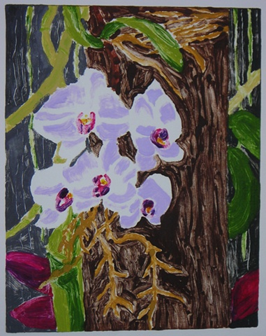 Tree Orchid