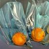 See Through Oranges