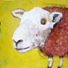 Mouton Sauvage