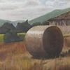 Hog Farm Outside of Corciano