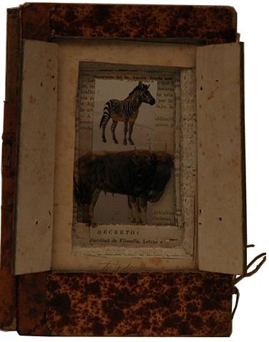 Lora Read, Marcos.1149