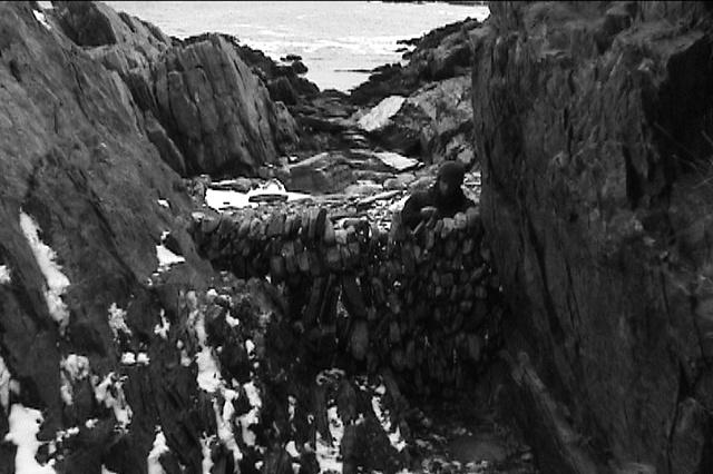 ocean wall [3.10.04] (still)