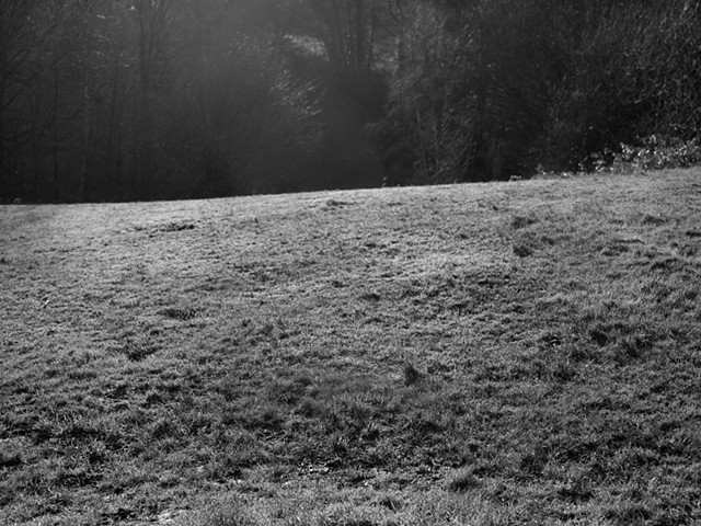 Hampstead Heath, imgp2070