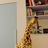 Mira's Bedroom