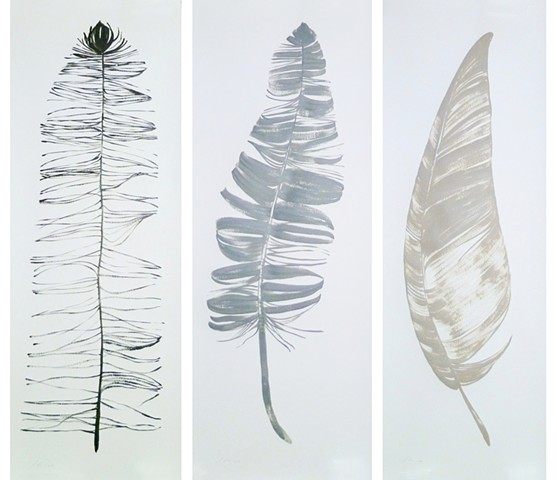 Feather Triptych