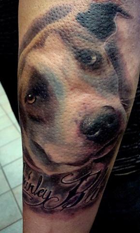 Barrys dog