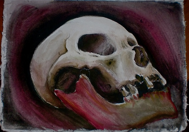 Watercolor Skull Study