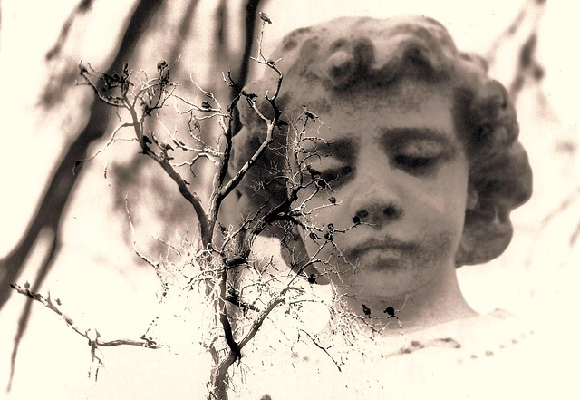 layered negatives create a film photograph of a cemetery statue and birds in a tree