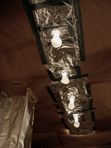 Ceiling Bulbs