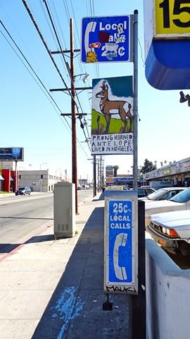 prong horn antelope, elk pen, elkpen, street signs, hollywoood, los angeles