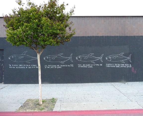 4 tuna, chalk signs, bluefin tuna