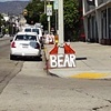BEAR ON VINE