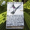 Colibri Sign