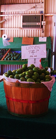 Limes 4 for A Dollar
