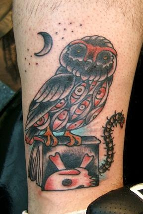 chris's owl