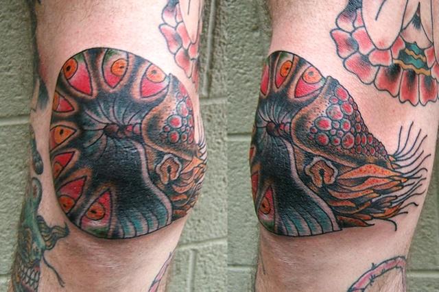 jon's knee nautilus