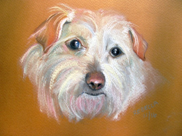 dog portrait in pastel