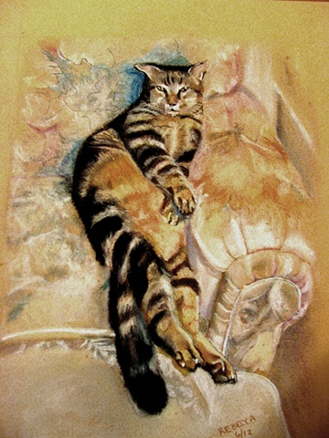 Tabby cat resting in a chair