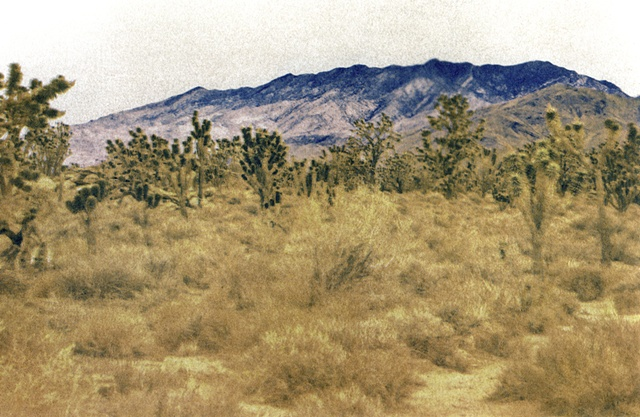 Mojave2_3of3