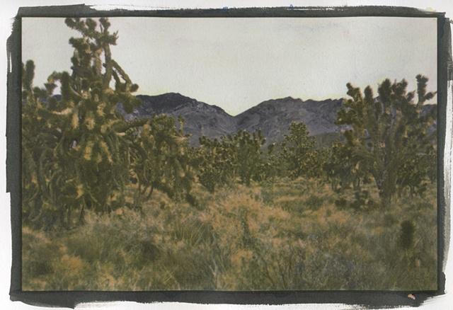 Mojave4_3of3