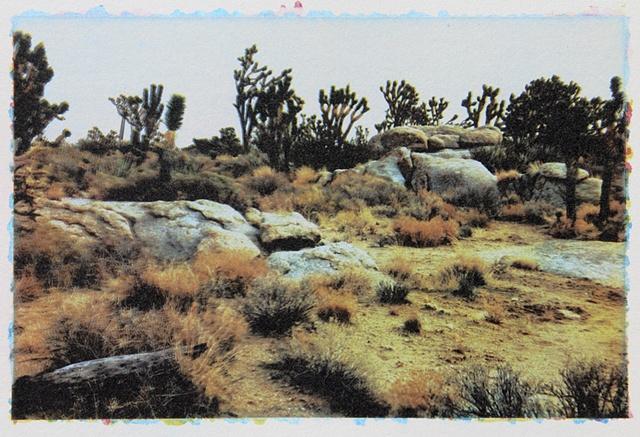 Mojave10_1of3