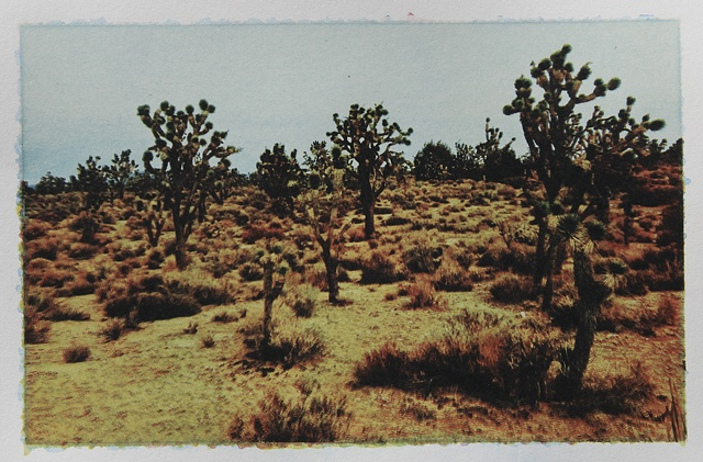 Mojave6_3of3