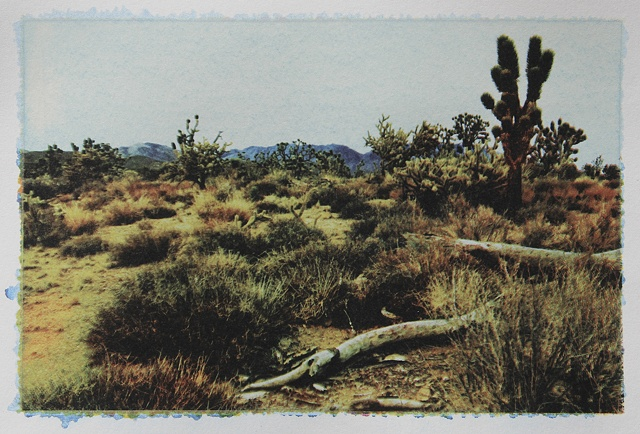 Mojave8_3of3