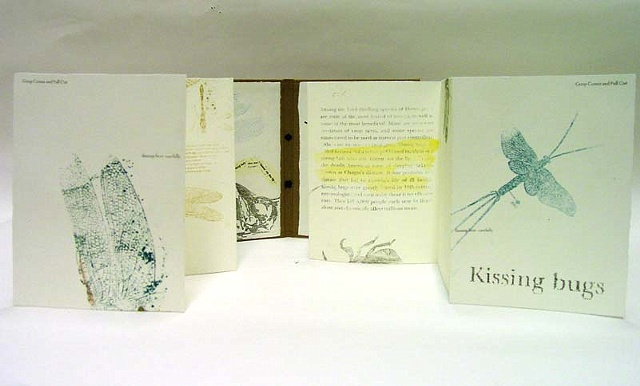 Kissing Bugs- detail