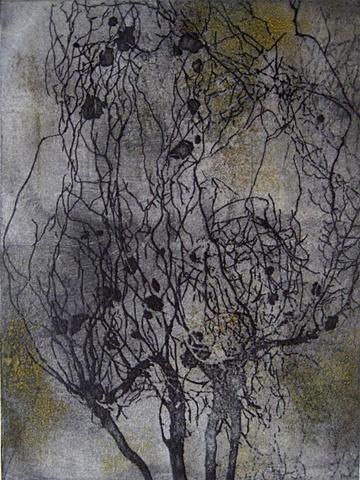 Root 1 Variation
