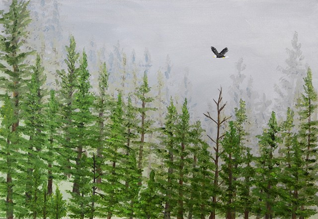 eagle, forest, nature, mist, mountains